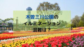 木曽三川公園 イルミネーション 混雑