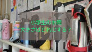 小学生 水筒 大きさ