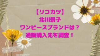 リコカツ 北川景子 ワンピース 通販