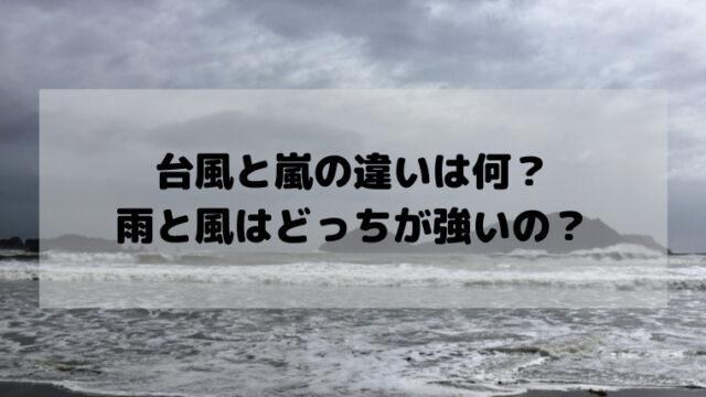 台風 嵐 違い