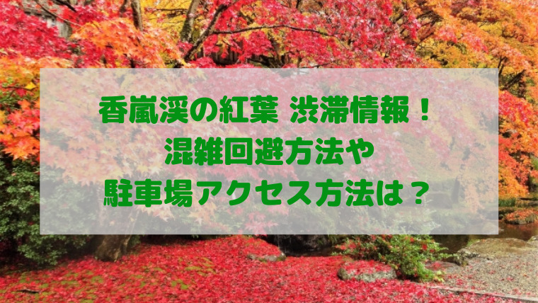 香嵐渓 紅葉 渋滞