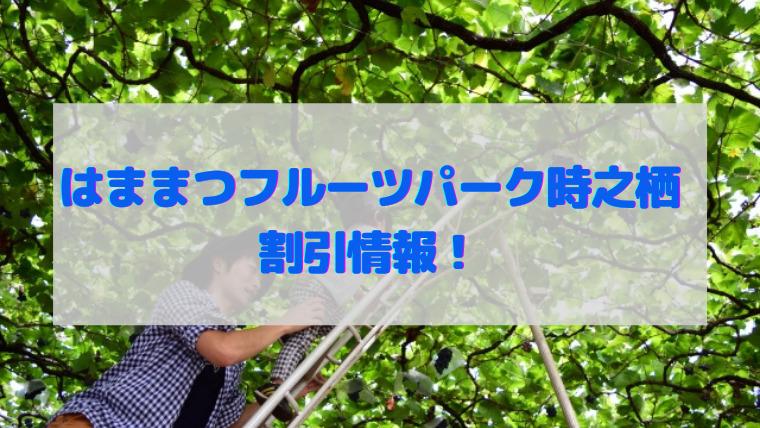 浜松フルーツパーク 割引